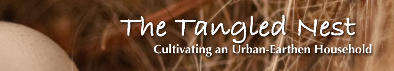 The Tangled Nest header image 1