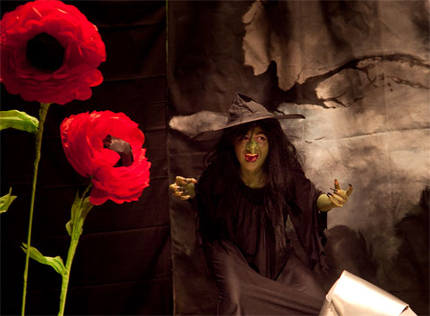 Claire as the Wicked Witch of the West, with magical poppies